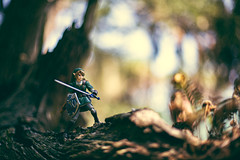 Apprehensive (3rd-Rate Photography) Tags: link thelegendofzelda zelda figma actionfigure toy toyphotography woods twilightprincess canon 50mm 5dmarkiii jacksonville florida 3rdratephotography earlware nintendo videogame