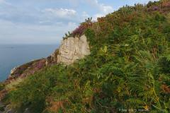 Beg ar Fry (Spotmatix) Tags: camera france lens landscape bretagne finistère 1650mm nex6 seaside sony places zoomstd