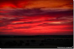 Ocaso Rojo (Antonio Zamora) Tags: antoniozamora red rojo nubes nube naturaleza nature paisaje paisajes spain sky sunset sun sol skies summer clouds cloud canon castillalamancha casasimarro color cielo colors colours colour colores campo landscape landscapes llanura lamancha 7d 1740l eos7d eos weather manchuela naranja orange atardecer atardeceres