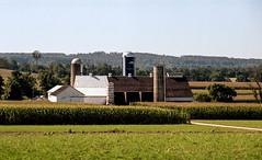 amish barn (bluebird87) Tags: amish barn film kodak portra 160 jobo lightroom nikon f5 dx0 c41