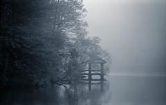 Quiet (Joe_R) Tags: water iso400 35mm fog lakeelkhorn tmax columbia film maryland unitedstates