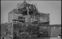 lobster traps, rope, wharf, working harbor, Owl's Head, Maine, Ercona II, Kodak TMAX 400, HC-110 developer, August 2019 (steve aimone) Tags: lobstertraps rope wharf workingharbor owlshead maine erconaii erconaii105mmf35 kodaktmax400 hc110developer 120 120film film 6x9 folder mediumformat monochrome monochromatic blackandwhite atlanticocean