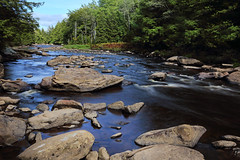 Blackwater River (ashockenberry) Tags: ashleyhockenberryphotography wild wilderness water reserve river beautiful beauty blackwater nature naturephotography natural landscape scenic scenery travel tourism habitat native west virginia rocky current flow mountains