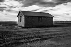 Vale, Oregon (paccode) Tags: solemn shack landscape dirtroad serious quiet clouds abandoned barn monochrome oregon blackwhite house d850 forgotten scary farm rain home creepy vale unitedstatesofamerica