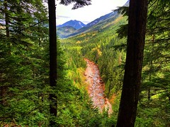 Looking Out (Pennan_Brae) Tags: river green mountain mountains peaceful beautiful nature britishcolumbia hike hiking park trees view viewpoint