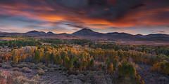 California Fall Colors (Jaykhuang) Tags: conwaysummit easternsierra fallcolors california trees mountains aspentrees jayhuangphotography yiupai sunset burn