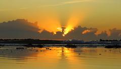 IMG_0063x (gzammarchi) Tags: italia paesaggio natura mare ravenna lidoadriano alba raggio nuvola riflesso