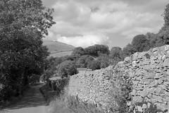 CountryRoad (Tony Tooth) Tags: nikon d7100 sigma 1750mm road backroad countryroad countryside bw blackandwhite monochrome crowdecote derbyshire england peakdistrict