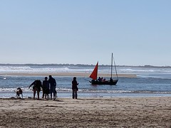 Alnmouth estuary vistas (markshephard800) Tags: plage bateau sable vagues mer dunes northsea sea waves beach sand dog people boat estuary northumberland alnmouth