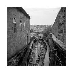 rails • porto, portugal • 2019 (lem's) Tags: rails cable car tram tramway porto portugal rolleiflex t