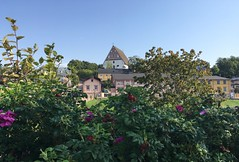 Porvoo 2019 (Seppo53) Tags: porvoo finland autumn sunny morning flowers city skyline sky cathedral oldtown wooden house architecture 19thcentury