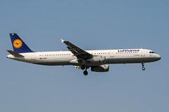 D-AIRT (PlanePixNase) Tags: frankfurt fra eddf airport aircraft planespotting lufthansa airbus 321 a321
