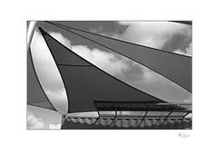Sail Away (radspix) Tags: minolta 7000i 3570mm af zoom f4 kentmere 100 pmk pyro