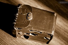 Brilliant 1932 (Listenwave Photography) Tags: listenwave merrill closeup foveon sigma sepia brown rare retro case camera voigtländer brilliant