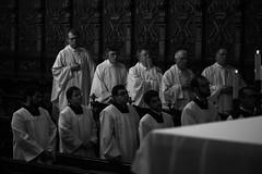 Dedicação Catedral