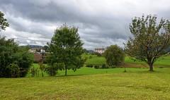 Hoy tenemos el cielo muy nuboso en Onyarbi (eitb.eus) Tags: eitbcom 16599 g1 tiemponaturaleza tiempon2019 gipuzkoa hondarribia josemariavega