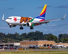 MSP N943WN (Moments In Flight) Tags: minneapolisstpaulinternationalairport msp kmsp mspairport aviation airliner n943wn californiaone swa southwestairlines boeing 737 b737 737700 7377h4