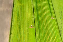 SMS_20190513_1294_.jpg (Luchtfotografie SiebeSwart.nl Aerial Photography) Tags: meteotijdstipvddagfotografie luchtfoto lente gemaaidgras landschap kleur gras lentegroen agrolandentuinbouwalgemeen nederland groen tractor maaien grasland versgras cutting grass grassland green holland landscape mowing mowngrass nature netherlands spring tractoren trekker voorjaar