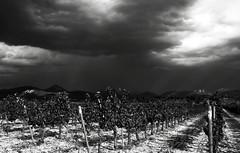 quand l'orage menace en Provence... Reynald ARTAUD (Reynald ARTAUD) Tags: 2019 août occitanie provence alpes orage menace reynald artaud