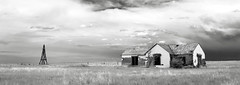 Weld County, Colorado (explore) (unknown quantity) Tags: abandonedhouse windmill sky clouds horizon shadows peelingsiding brokenroof openwindows grass monochrome blackandwhite faded weathered cloudsstormssunsetssunrises