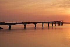 Pertuis_Breton_0012 (alain leveque) Tags: pont bridge ré 17000 ile charentemaritime rochelle sun sea coucher soleil couleur or dorées
