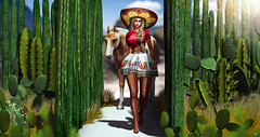Cactus fiesta (meriluu17) Tags: tlalli stealthic sombrero texas mexico red horse west cactus fiesta plant flower flora animal pet her people portrait