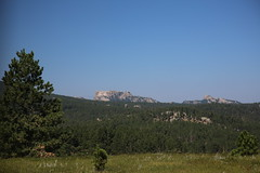 AU3A6525 (MegachromeImages) Tags: sd south dakota pigtail loop black hills mount rushmore granite rock formation forest ponderosa pine mineral alpine custer state park buffalo