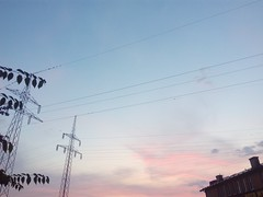 Early Morning Transmissions 00 (gemiiniitwiin) Tags: landscape sky skyscape transmissiontowers transmissionwires wires transmission house buildings morning morninglights dusk dawn purple pink blue pale phone sunrise