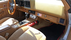 Z28 (shagracer) Tags: z28 brown tan caramel interior upholstery