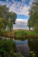 Crowland Landscape.jpg (uplandswolf) Tags: crowland lincolnshire lincs fen fenland trees river riverwelland
