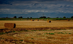 What a lot of Bales.jpg (uplandswolf) Tags: crowland lincolnshire lincs fen fenland bigsky bales