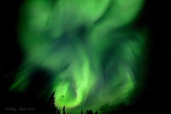Sky of Wonder (Katy on the Tundra) Tags: northernlights auroraborealis aurora nightsky