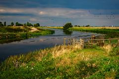 River Welland at Crowland 2. (uplandswolf) Tags: crowland lincolnshire lincs fen fenland bigsky riverwelland river welland