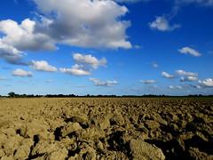 IMG_0035x (gzammarchi) Tags: italia paesaggio natura pianura campagna ravenna borgomontone campoarato zolla nuvola