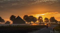 Sunrise, fog and morning newspaper delivery (BraCom (Bram)) Tags: 169 bracom bramvanbroekhoven goereeoverflakkee herkingen holland nederland netherlands southholland zuidholland akker autumn barn boerderij bomen cloud clouds driving farm field fog gras grass herfst krantenbezorger landscape landschap mist mood morning nature natuur newspaperdeliverer ochtend pad path polder postbode postman rijden road schuur scooter sfeer sky sun sunrays sunrise trees weg widescreen wolk wolken zon zonsopkomst