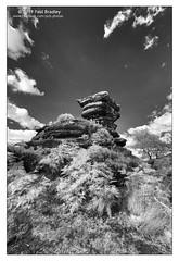 Brimham - rock (ScudMonkey) Tags: copyrightc2019 paulbradley brimham nationaltrust rock digitalinfrared 720nm landscape monochrome blackwhite bw northyorkshire canon converted7d efs1022mmf35