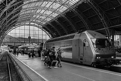 """On steady course"" (Terje Helberg Photography) Tags: bw blackandwhite bnw candid citylife cityscape citywalk commuters commuting locomotive mono monochrome people railwaytracks street streetphotography streetlife tourisme tourists train trainstation travellers travelling urban"
