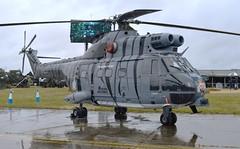 Airbus Puma HC2 XW224 (Fleet flyer) Tags: airbuspumahc2xw224 helicopter airbus puma raf riat royalinternationalairtattoo hc2 royalairforce raffairford xw224