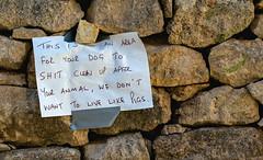 malta-dog-lovers (MOS2000) Tags: malta reise dog shit clean hund paper sign schild papier mauer wall