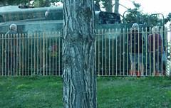 35006 Peninsular & Oriental S. N. Co - Broadway Station on the GWSR (ell brown) Tags: greatbritain trees england tree train coach unitedkingdom broadway cotswolds gloucestershire worcestershire highst gwr steamlocomotive greatwesternrailway stationrd gwsr gloucestershirewarwickshiresteamrailway gloucswarkssteamrailway stationrdbroadway highstbroadway cheltenhamracecoursetobroadway gwrbroadwayareagroup southernrailway srmerchantnavyclass35006peninsularorientalsnco merchantnavyclass462steamlocomotive