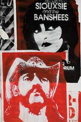 Urban Art (michael_hamburg69) Tags: hamburg germany deutschland streetart urbanart stencil wall mittenimwald artist künstler wohlwillstrasse50 eldorado musikbar lemmykilmister lemmy motörhead siouxsieandthebanshees
