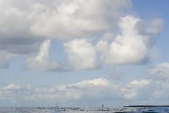 Dive 856 ending (Arne Kuilman) Tags: zeeland duiken diving netherlands nederland 60mm macro nauticam zlb zeelandbrug underwater zierikzee sky lucht dive856