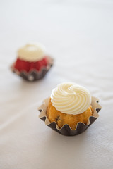 Cupcakes (niseag03) Tags: tennessee 2019