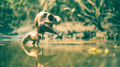 Lookin' for lunch in all the wrong places. (3rd-Rate Photography) Tags: tyrannosaurus tyrannosaurusrex trex dinosaur funko jurassicpark jurassicworld toy toyphotography canon 50mm 5dmarkiii jacksonville florida 3rdratephotography earlware