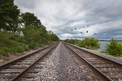 Bend in the Line (SteveFrazierPhotography.com) Tags: lingerlonger park restarea iowa ia leecounty mississippi river geese flying clouds water rocks gravel trees stevefrazierphotography photographer highway61 montrose mormonexodus hwy61 composite waterlilies vegetation stormy ties tracks railroad spikes riverside banks lines landscape scene scenery dragoontrail view beautiful waterscape cloudy