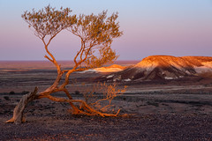 Breakaways at Sunset (Nature's Image Photography) Tags: breakaway breakaways cooberpedy southaustralia