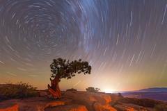 Nightlights (Darren White Photography) Tags: nightphotography nightscapes moab startrails darrenwhitephotography longexposure nikond850 sigma14mmart