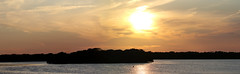 Panorama Ft DeSoto Sunset 9-10-2019 (dbadair) Tags: outdoor seaside shore nature wildlife 7dm2 7d ii ef100400mm canon florida bird gbh