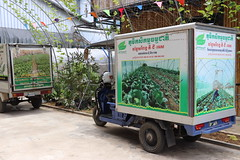 Cambodia-dawson-02 (752) (Horticulture Innovation Lab) Tags: cambodia phnompenh photobybrendadawson legrand ucdavis royaluniversityofagriculture naturalagriculturevillage transportation