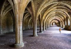 Corre! (Manuel Gayoso) Tags: fountainsabbey yorkshire inglaterra abadia cellarium bodega arcos columnas gotico perspectiva niño correr alegria he leicadlux7